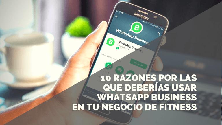 10 ventajas de usar Whatsapp Business en tu negocio de fitness